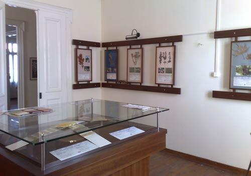 040b_irismuseum