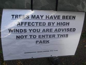 Dangeroustrees