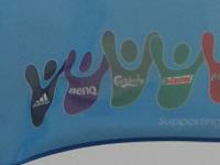 Euro2008flagsponsors